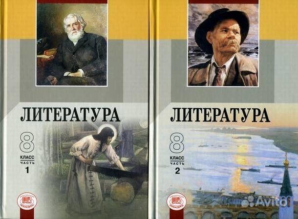 ГДЗ по литературе 8 класс Беленький