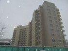 Аренда квартир - снять квартиру без - Avito ru