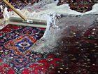 Стирка / чистка ковров