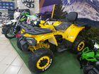 Классный квадроцикл MotoLand wild track X PRO 200