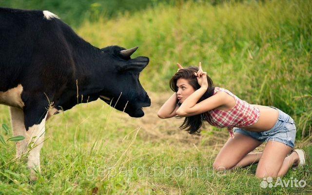 Девушка на быке дает жару.