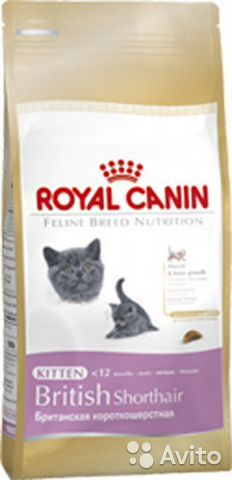 Royal Сanin kitten british shorthair 2кг— фотография №1