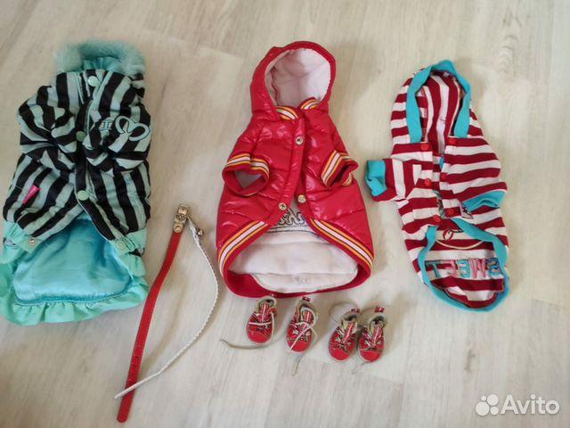 Одежда для маленьких собак  89145575993 купить 1