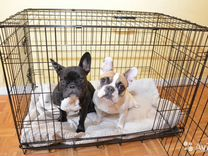 Клетка для собаки №3. складная и другие